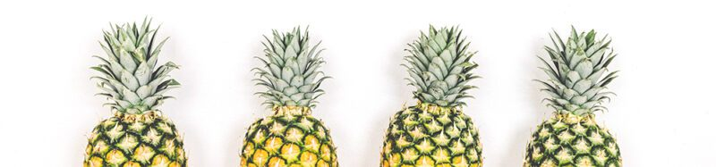 In pineapple leather (pinatex) sustainable?